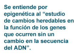 sum_epigenetica_02